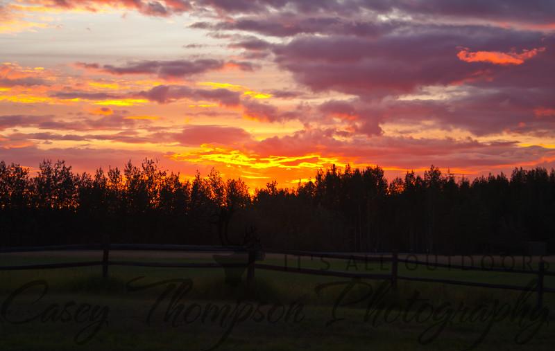 Alaska Sunset - Creamer's Field - Fairbanks, AK