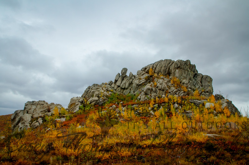 Rock Outcropping in a Tor Field near Finger Mountain on the Dalton Highway near the Arctic Circle.