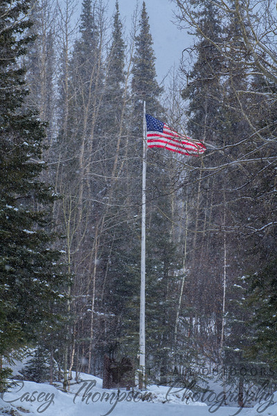 Old Glory - Denali National Park Headquarters