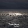 100  G Sun on Water