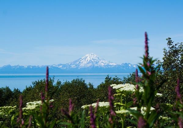 Alaska Wilderness & Landscapes