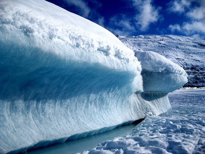 Iceberg off of Spencer Glacier