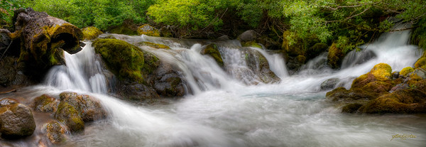 """Golden Cascade"" Mt. Baker Recreation Area, Sedro Woolley, WA"