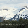 Porter Glacier