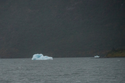 Iceberg on Portage Lake