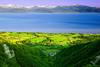 Alaska, Homer, Skyline Drive Kachemak Bay Landscape, 阿拉斯加 风景