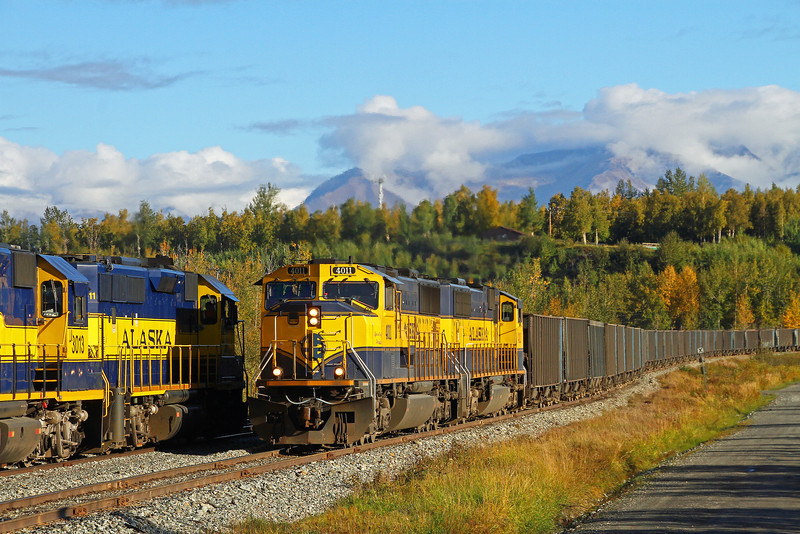 A loaded gravel train swings off of the Palmer Branch and will soon enter the mainline for the short trip to Anchorage where they will dump their load of gravel and return to the yard.