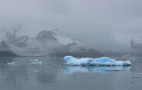 """Cold Blue""  ice - Kenai Fjords National Park"