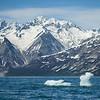 Tarr Inlet Iceberg
