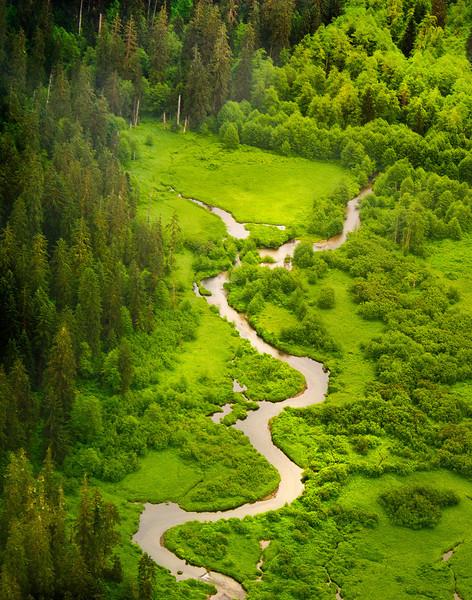 On the way to Misty Fjords, Alaska