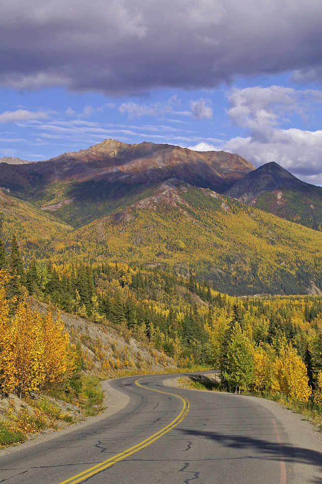 Denali Park road. Fall colors in Alaska start quite a bit earlier than in the lower 48.