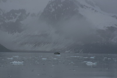 Lonely Fisherman, cold and rainey, Aialik Bay, Kenai Fjords National Park