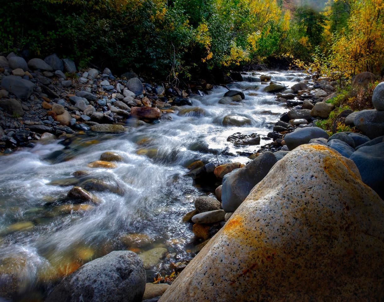 Stream on the Denali Highway