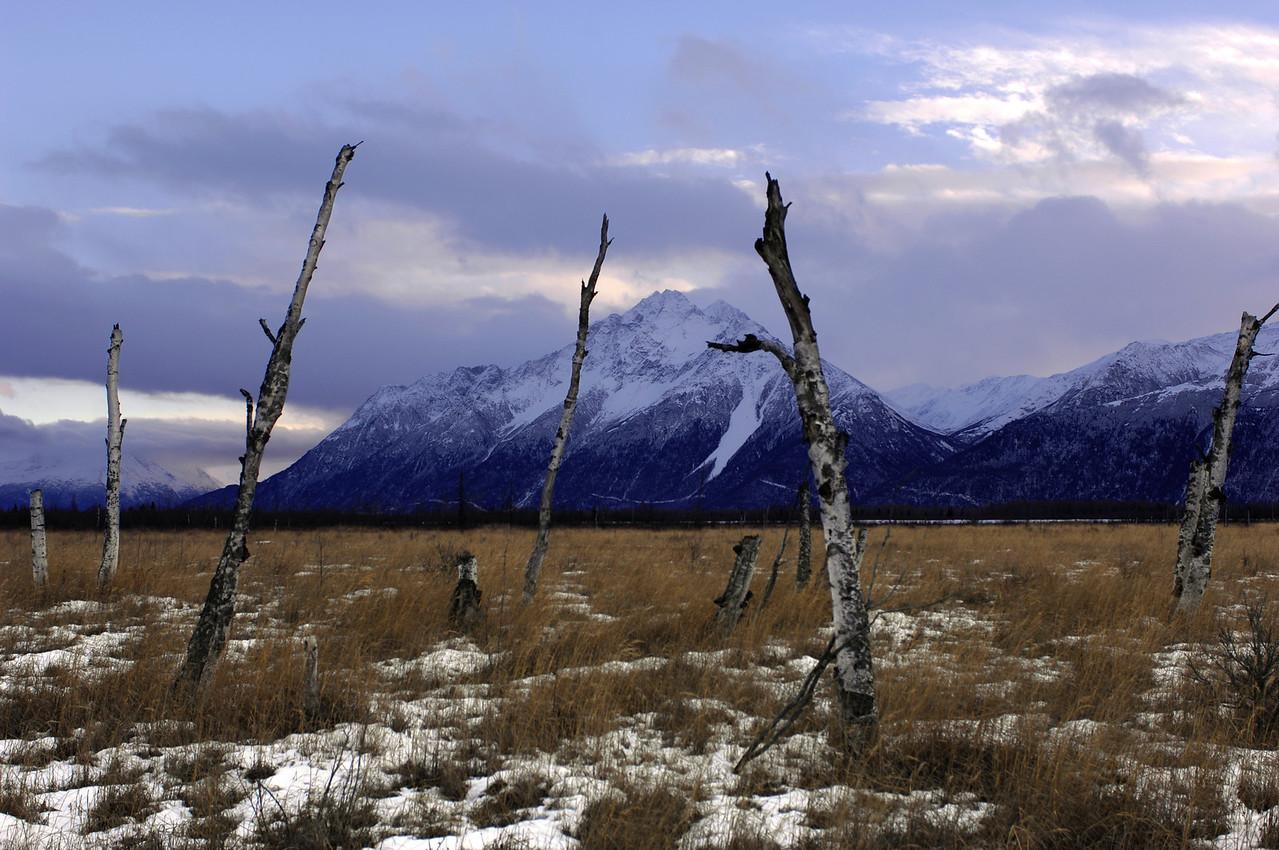 near the Glenn Highway, Wasilla, Alaska