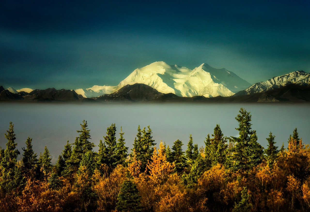 Denali Morning Light