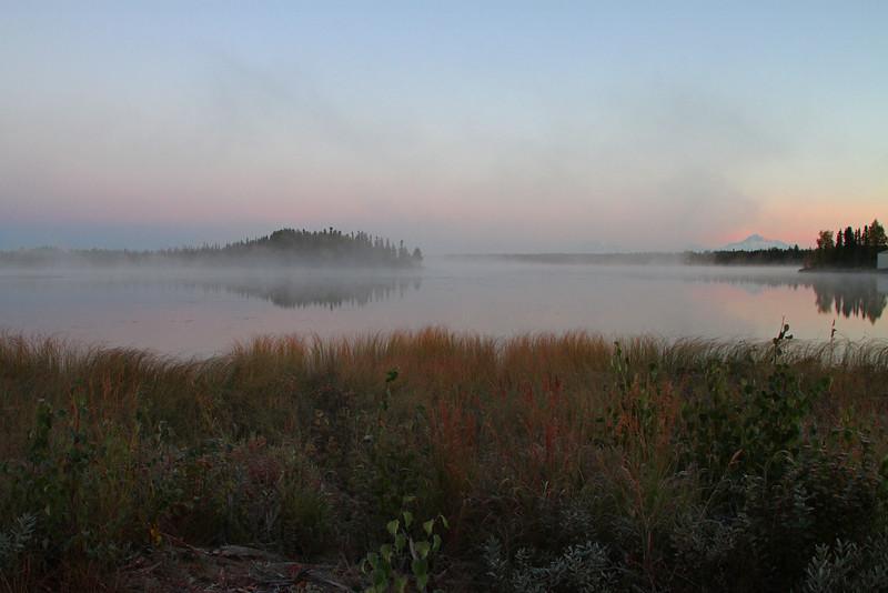 Foggy Denali