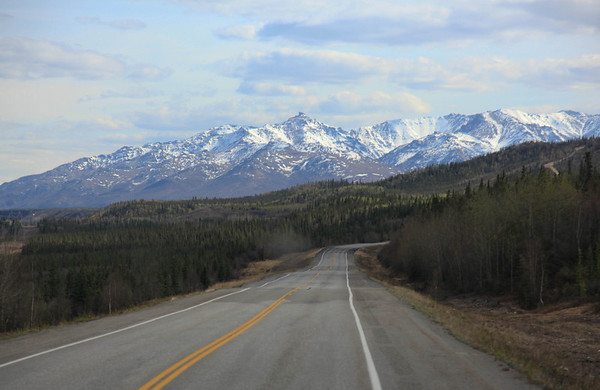 on the road to Denali National Park