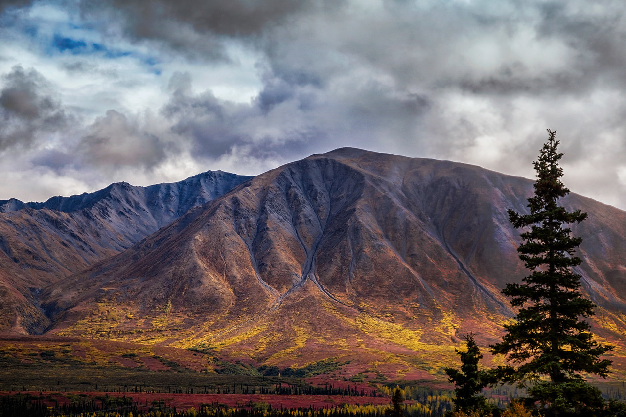 Denali Highway in Fall