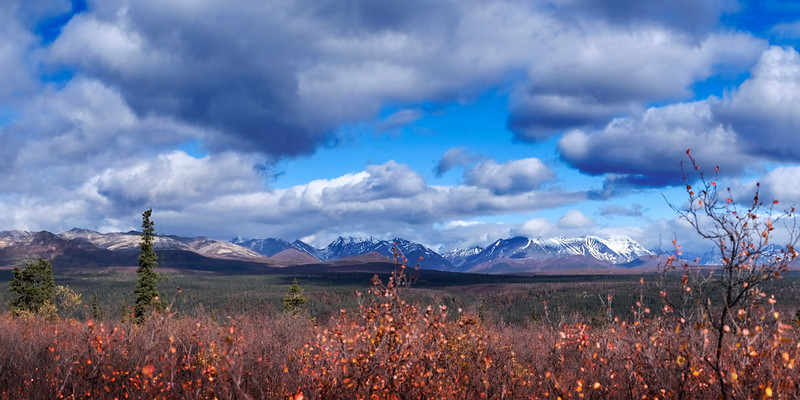 Fall On the Denali Highway