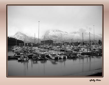 Valdez Harbor June 2010