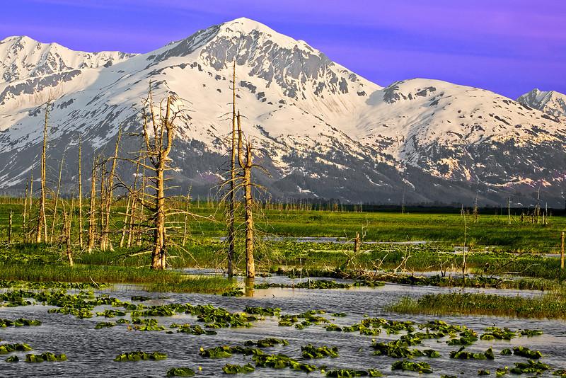 Alaska, Portage Valley Landscape, 阿拉斯加 风景