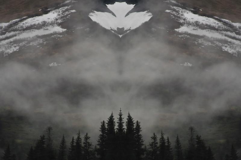 """White Eagle"" - taken near Seward, Alaska"