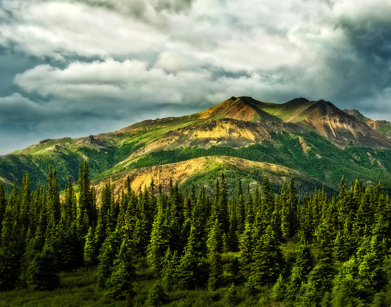 Beauty of the Alaska mountains near Denali National Park