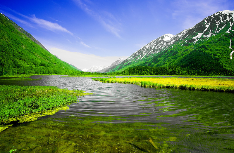 Alaska, Roadside View, Sterling Hwy Landscape, 拉斯阿加 风景