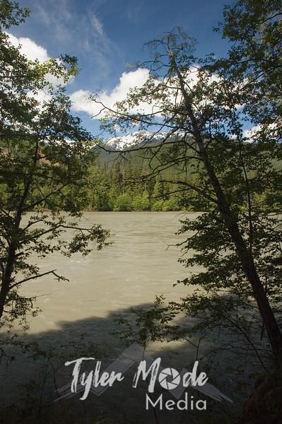97  Rushing Skeena River