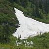 127  Snow Drift