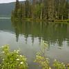 116  Meziadin Lake V