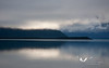 August 2011. Naknek Lake as seen from Brooks Camp. It seems calm and quite - and even was... if you negotiate the thousands of annoying bugs and flies.