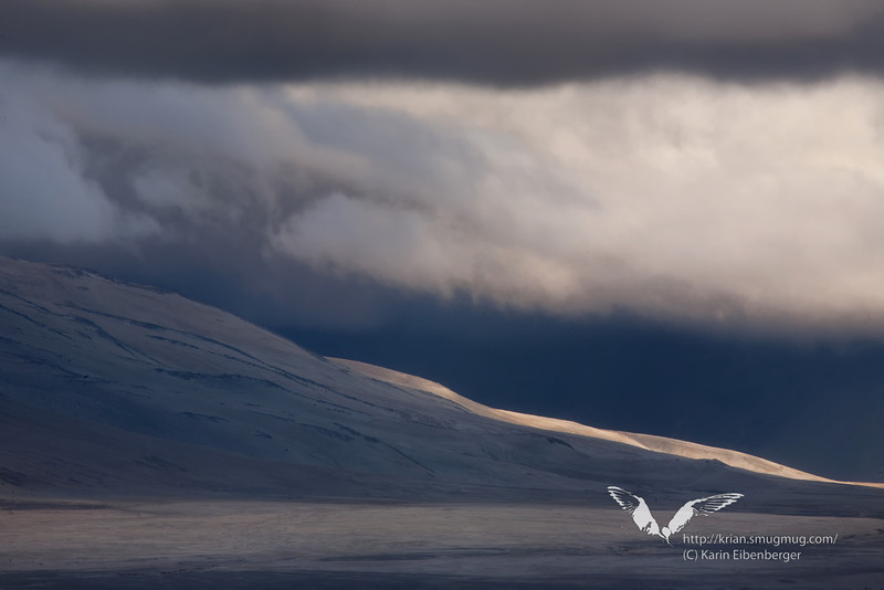 August 2011. Katmai National Park, Valley of 10,000 Smokes. Nightfall in the Valley as seen from Six Miles Camp.