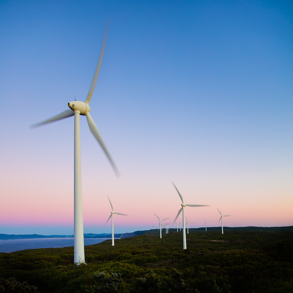 Albany Wind Farm.  Pre-dawn.
