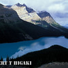 Peyto  Lake; melted glacial water gives that blue color