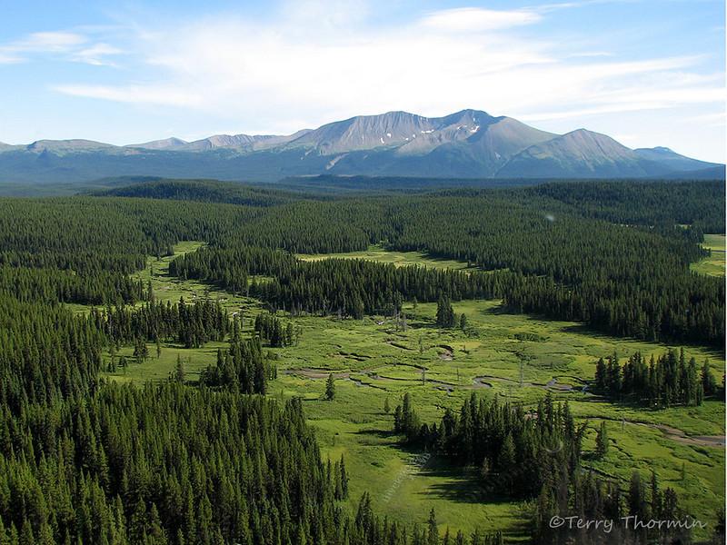Dead Horse Meadows from the air, Kakwa Wildlands Park, Alberta