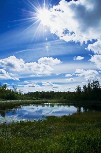 Elk Island National Park, Alberta