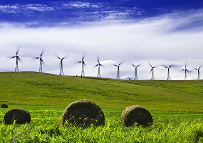"""Wonderful Wind""  Southern Alberta Near Pincher Creek"