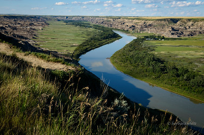 Red Deer River Valley looking North East