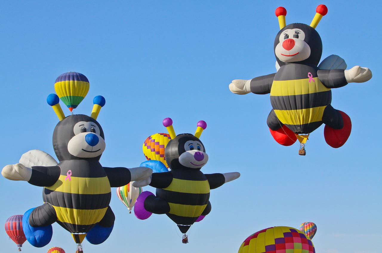IMAGE: http://www.palermini.com/Landscapes/Albuquerque-Balloon-Fiesta/i-7ZbF5ZH/1/X2/NSR-6-X2.jpg