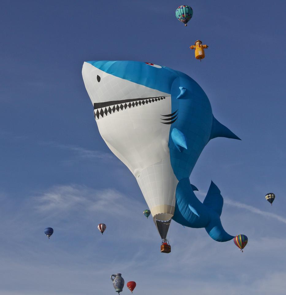 IMAGE: http://www.palermini.com/Landscapes/Albuquerque-Balloon-Fiesta/i-RVrRWcg/2/X2/NSR-39-X2.jpg