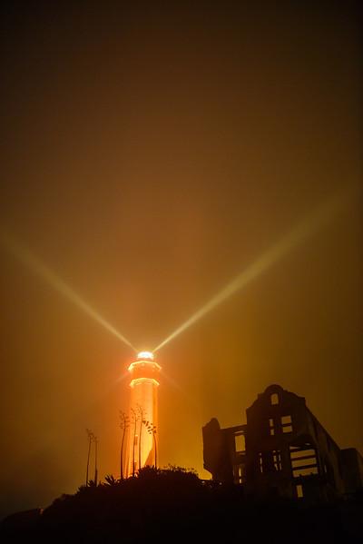 Alcatraz-Oct-2012-2708