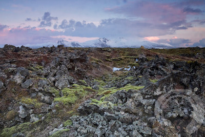 Looking like Middle Earth at this Snaeffels Peninsula lava field