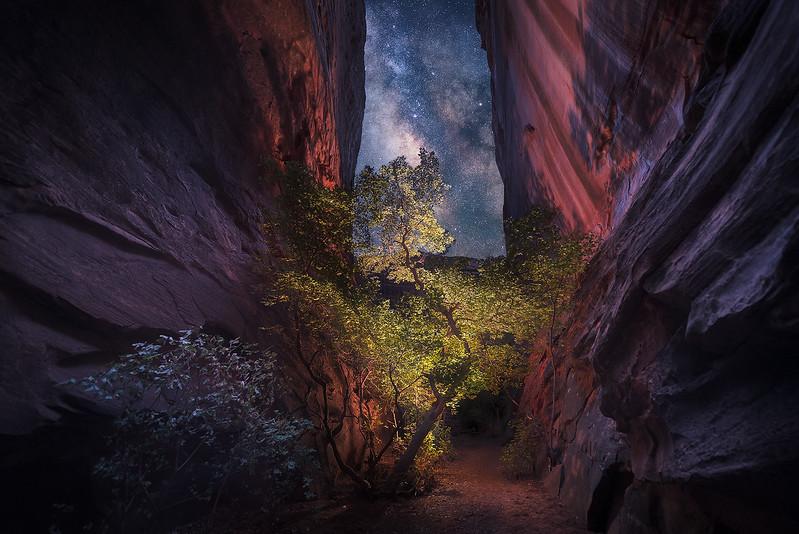 Mystery Canyon
