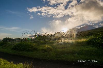 Kauai Sunshine