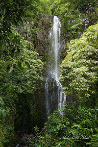 Kauai Waterfall