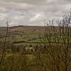 Allen Banks in Northumberland