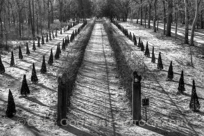 Allerton in Black and White...view of the garden from the upper level of the gazebo