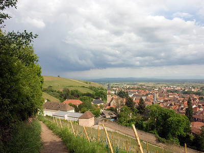Alsace - Breisgau