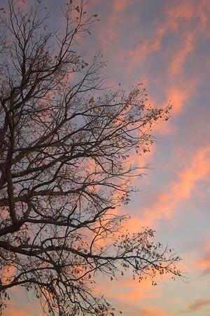 Altamont Sunrise